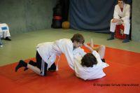 Judo_2017_0011