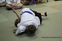 Judo_2017_0016