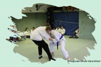 Judo_2017_0015_1