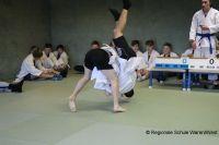 Judo_2019_0032